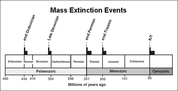 the five mass extinctions Many scientists argue we are in the midst of a mass extinction caused by habitat destruction and climate change.